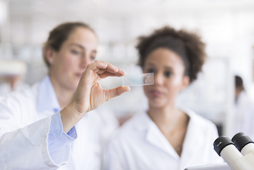 Scientists analyzing microscope slide